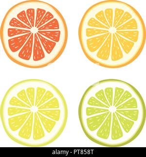 Vektor, Limette, Zitrone, Grapefruit und orange Slices auf weißem Hintergrund. Tropische Früchte Symbole, organische Nahrung Symbole - Stockfoto