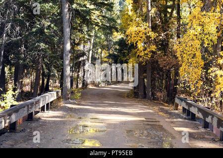 Herbst Glanz über die Brücke. - Stockfoto