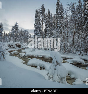 Frischen Schneedecke borealen Wald in der Nähe von Heia, Grong, Norden Norwegens. Fantastisches Winter. - Stockfoto
