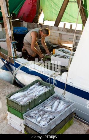 Tribunj, Kroatien - August, 24, 2018: Fischer Sortieren der Fänge an einem Deck von einem Verankerten Trawler Yacht - Stockfoto