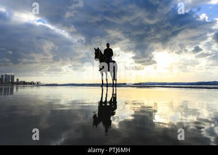 Ein Foto von Mann ein Pferd reiten am strand, Gaza, Palästina. - Stockfoto