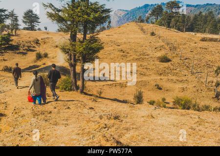 Bild von einer indischen Familie, die einen Spaziergang auf einem Hügel inmitten von Bäumen - Stockfoto