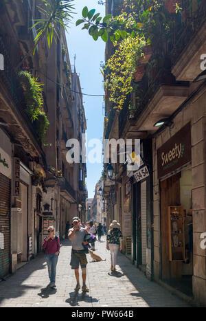 Geschäfte und Bars auf der Carrer de la Llibreteria im Gotischen Viertel (Barri Gòtic), Barcelona, Katalonien, Spanien. - Stockfoto