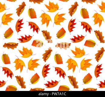 Nahtlose Herbst Hintergrund mit roten und orangenen Blätter auf weißem Hintergrund mit Freistellungspfad isoliert - Stockfoto