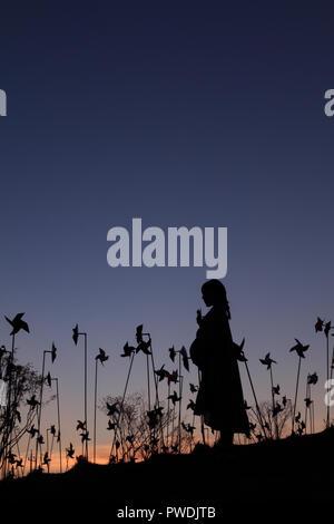Silhouette der asiatischen schwangere Frau in der Mitte des Rädchen Feld - Stockfoto