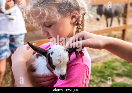Closeup Kind hält ein Baby Ziege, braun weiß Neugeborene, zarte Konzept, Natur, Tiere, Tier, kleine Dinge, Glück freundlichkeit Liebe - Stockfoto