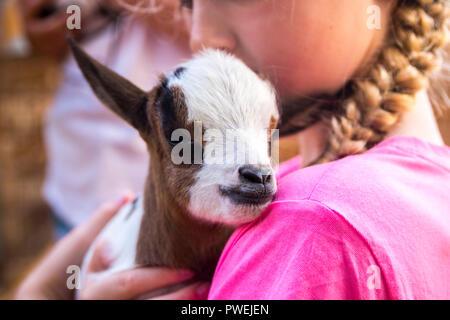 Nahaufnahme von ein Kind, ein Baby Ziege, Braun weiße Ziege Neugeborene, liebe Konzept, Natur, Baby Tiere Baby Tier, kleine Dinge, Liebe - Stockfoto
