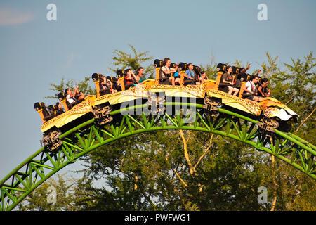 Tampa, Florida; September 29,2018. Lustige Leute genießen Geparden jagen Achterbahn in Busch Gardens Freizeitpark. - Stockfoto