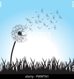 Löwenzahn Blume, Vektor - Stockfoto