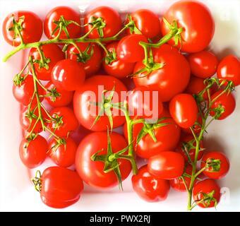 Tomaten, - Stockfoto