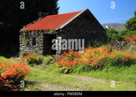 Stillgelegten alten Bauernhaus, County Kerry, Irland - Stockfoto