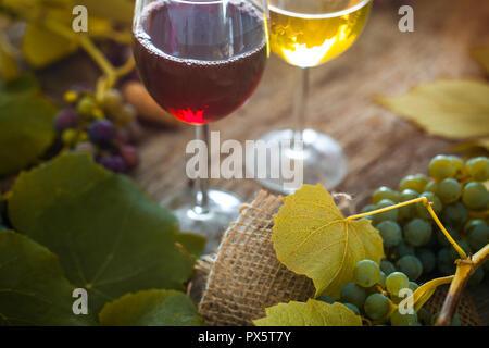 Wein. Glas Weiß- und Rotwein im Weinkeller. Alter Wein auf Holz. - Stockfoto