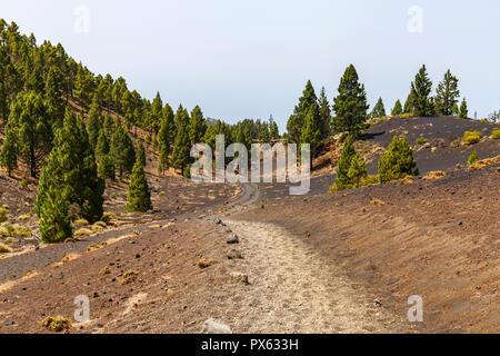 Pfad entlang der Ruta de los Volcanes, schönen Wanderweg über die Vulkane, La Palma, Kanarische Inseln - Stockfoto