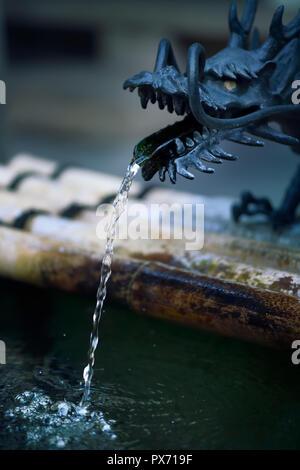 Dragon Head Chozubachi, Chozuya, Wasser Reinigungsritual Waschbecken zum Waschen der Hände vor dem Eintritt in einen Schrein in Kyoto, Japan - Stockfoto
