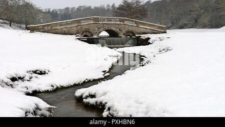 Winter in Hovingham Park - Stockfoto