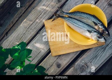 Zwei frischen Fisch auf einem Schneidebrett, kochen Makrele, fishtails Nahaufnahme - Stockfoto