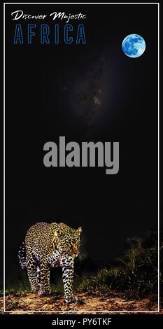 Afrika Reisen Poster v9.jpg-PY 8 FWC - Stockfoto