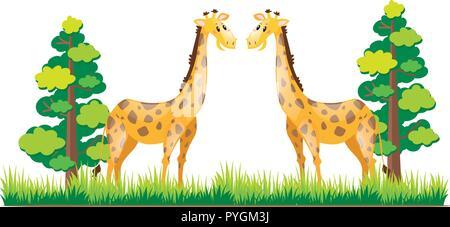 Zwei Giraffen im Park Abbildung stehend - Stockfoto