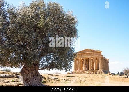 Italien, Sizilien Insel, das Tal der Tempel von Agrigento, Blick auf den Tempel der Concordia - Stockfoto