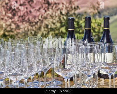 Flaschen Wein und Gläser mit der Langhe Landschaft im Hintergrund. Langhe ist ein berühmter Ort für gute Weine und Lebensmittel in Italien - Stockfoto