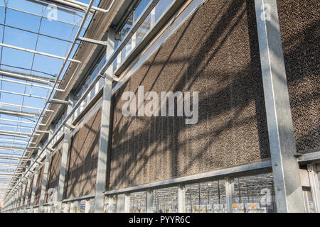 Glasdach mit Filtereinheit in einem modernen Gewächshaus - Stockfoto