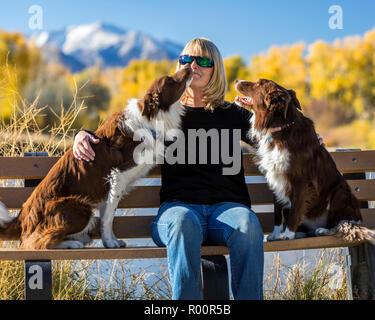 Informelle Outdoor Portrait der Frau mit ihren beiden Border Collie Hunde in einem Park, in der Nähe von Salida, Colorado, USA - Stockfoto