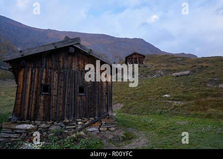 Fane Alm mit Pfundigerer Berge, Südtirol, Italien