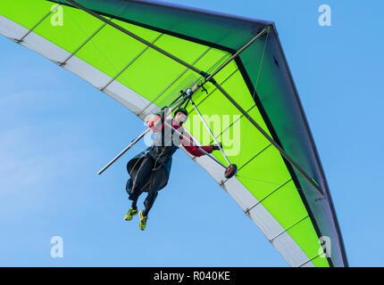 Man Drachenfliegen im Herbst mit blauem Himmel, auf der Suche nach einem Platz auf der South Downs in East Sussex, England, UK zu landen. - Stockfoto