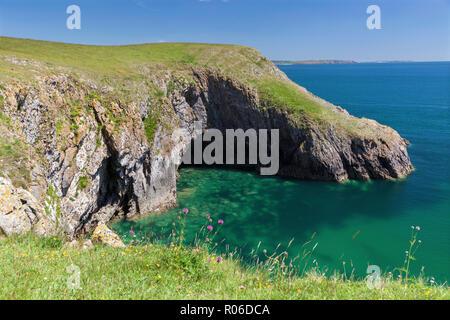 Barafundle Bay, Pembrokeshire Coast, Pembrokeshire, Wales, Vereinigtes Königreich, Europa - Stockfoto