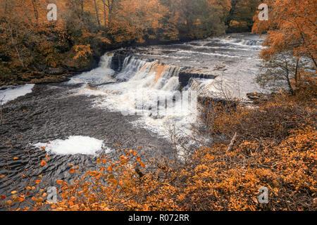 Aysgarth Falls sind eine dreifache Flug von Wasserfällen, von Wald und Ackerland umgeben, geschnitzt aus durch den Fluß Ure über einen Fast einen Kilometer langen auf - Stockfoto
