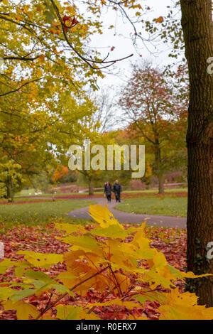 Sankey Valley Park in Warrington, Cheshire, UK. 04. November 2018 - Eine frühe Sonntagmorgen Einlaß des herbstlichen frische Luft bei Sankey Valley Park in Warrington, Cheshire, England, UK Credit: John Hopkins/Alamy leben Nachrichten Stockfoto