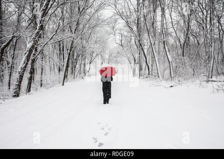 Frau allein im Wald zu Fuß, Schnee Szene Sturm Land Straße Wald, New Jersey, USA, Winter Woodland Walk, USA, Straße voraus, Waldweg - Stockfoto