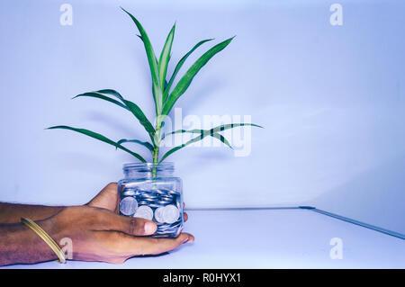 Geschäftsmann hand mit einem Glas voller Münzen auf weißem Hintergrund. Geschäft Geld Wachstum Konzept. Kleiner grüner Baum Blatt wachsen auf viele Münzen. - Stockfoto
