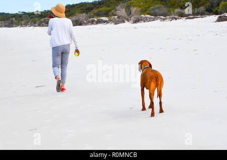 Frau mit Sonnenhut Spaziergänge am Strand mit Hund, der warten sehnsüchtig auf ihre Kugel für ein Spiel von Fetch zu werfen. Lady walking Hund am Strand. - Stockfoto