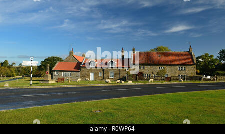 Schafe weiden neben Cottages in Goathland, die häufig in den Episoden der Fernsehserie Heartbeat erschienen - Stockfoto