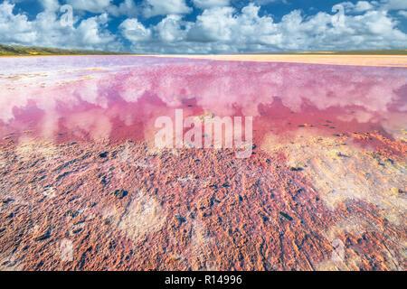 Malerische ufer Pink Salt Lake, Gregor in Western Australia. Blauer Himmel mit Wolken spiegeln sich in Hutt Lagoon zwischen Geraldton und Kalbarri, mit einem lebhaften Rosa Farbe, die für die Präsenz von Algen im Sommer - Stockfoto