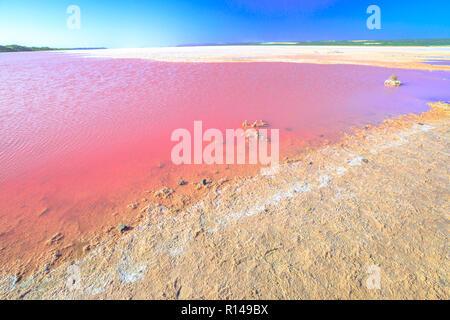 Pink Salt Lake an Gregor in Western Australia. Malerische Ufer des Hutt Lagoon zwischen Geraldton und Kalbarri, mit einem lebhaften Rosa Farbe, die für die Präsenz von Algen im Sommer. Horizont blauer Himmel mit Kopie Raum - Stockfoto