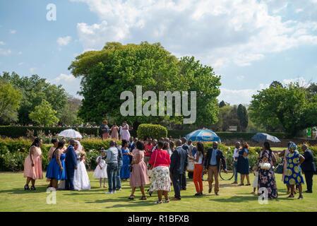 Johannesburg, Südafrika. 10 Nov, 2018. Die Rosengärten in der Johannesburg Botanischer Garten, einen öffentlichen Park, ist ein beliebter Ort für Hochzeiten. Credit: Eva-Lotta Jansson/Alamy leben Nachrichten - Stockfoto