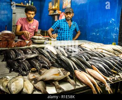 Fischmarkt in Sri Lanka - Stockfoto