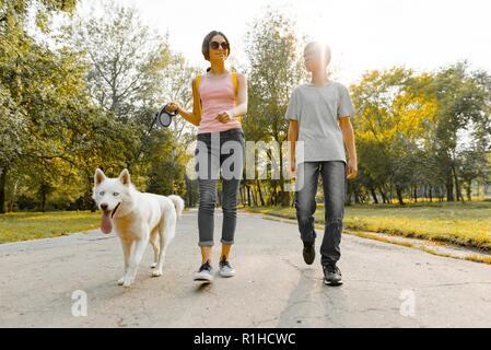 Kinder und jugendliche Jungen und Mädchen zu Fuß auf der Straße in den Park mit einem weißen Hund husky. - Stockfoto