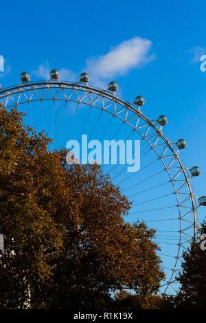 London, UK, 13. November 2018. Blauer Himmel über London Eye mit Herbst bunte Blätter im Vordergrund, wie aus der Downing Street gesehen. Credit: Dinendra Haria/Alamy leben Nachrichten - Stockfoto
