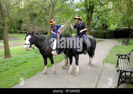 Schule Mädchen Vorbereitung von der Schule auf dem Rücken der Pferde mit ihrer Mutter in Shropshire Uk zu fahren - Stockfoto