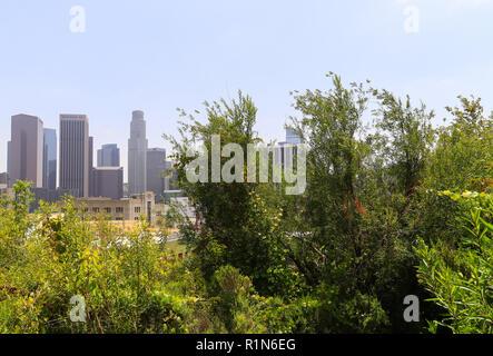Los Angeles, Kalifornien, USA - 30. Mai 2017: Ansicht der Turm Gebäude in der Innenstadt von Los Angeles. In der Vista Hermosa Naturpark fotografiert. In - Stockfoto
