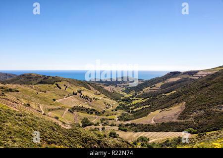 Côte Vermeille, Pyrénées-orientales, Katalonien, Languedoc-Roussillon, Frankreich - Stockfoto