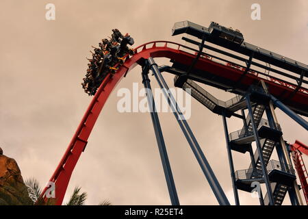 Tampa, Florida. Oktober 06, 2018. Fanny Gruppe genießen Sheikra Achterbahn in Busch Gardens Tampa Bay. - Stockfoto