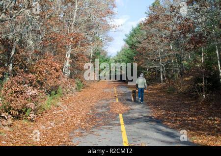 Frau wandern ein airedale im späten Herbst entlang der glänzende Meer Radweg in Plymouth, Cape Cod, Massachusetts, USA - Stockfoto