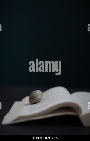 Ein Buch mit einer Seite, die von einem Felsen gehalten wird. - Stockfoto