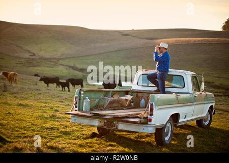 Bauernmarkt pickup truck auf einer landstraße auf das ackerland der