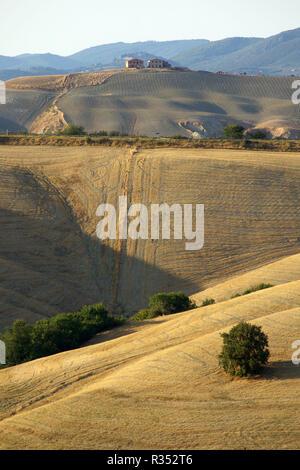 Hügelige Landschaft der Crete Senesi, Asciano, Toskana, Italien Foto © daiano Cristini/Sintesi/Alamy Stock Foto - Stockfoto