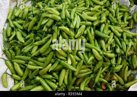 Frisch geerntete raw Green Chili Pepper's in einem Bauernmarkt in Jaipur, Rajasthan, Indien produzieren. - Stockfoto